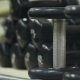 Sports Dumbbells. Fitness Equipment - VideoHive Item for Sale