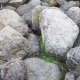 Group Of Big Boulder Stones Lying In Field, Natural Geologic Background - VideoHive Item for Sale