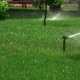 Sprinkler Irrigation In Park - VideoHive Item for Sale