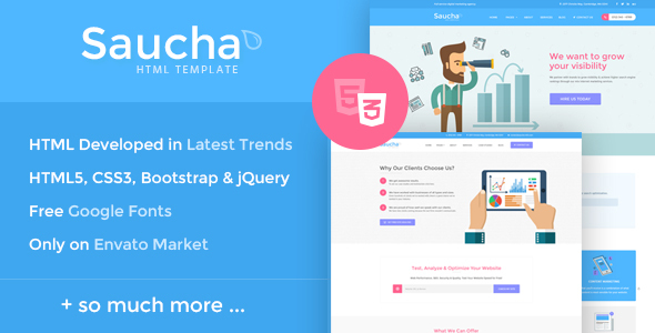 Saucha – Marketing & SEO Services Template
