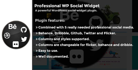 Professional WP Social Widget Plugin