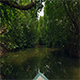 Boat Ride Through River 2 - VideoHive Item for Sale