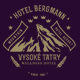 Creative TriFold Brochure Hotel Bergmann - GraphicRiver Item for Sale