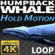 Humpback Whale 2 - VideoHive Item for Sale