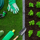 Gardening and food production - PhotoDune Item for Sale