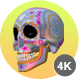 Sugar Candy Skulls - 12 Clips + 6 Transitions - VideoHive Item for Sale