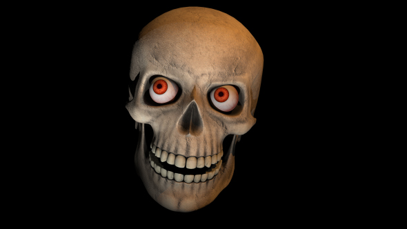 Scary Skull Transition by thevisual | VideoHive  Scary Skull Tra...