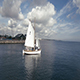 Aerial Of Sailboats Part 1 - VideoHive Item for Sale