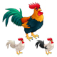 Group of Funny Roosters in Different Colors - GraphicRiver Item for Sale