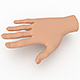 Hand Model for 3D Cartoon Model
