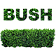 Bush Step - AudioJungle Item for Sale
