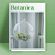 Botanica - GraphicRiver Item for Sale