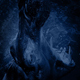 Hippo Roars And Submerges At Night - VideoHive Item for Sale