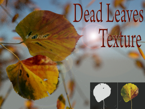Dead Leaves - 3DOcean Item for Sale