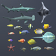 Coral Fish Pack - 3DOcean Item for Sale