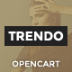 Trendo - Minimalistic Fashion Store OpenCart Theme Nulled