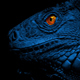 Lizard With Glowing Eyes At Night - VideoHive Item for Sale