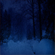Person Walks In Snowfall At Night - VideoHive Item for Sale