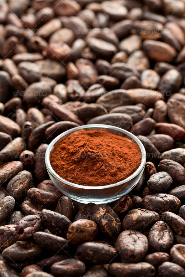 cocoa beans and cocoa powder - Stock Photo - Images