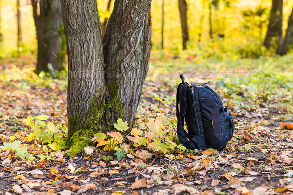 backpack in the woods concept travel tourism - Stock Photo - Images
