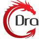 Circular Dragon Logo