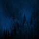 Misty Woods At Night - VideoHive Item for Sale