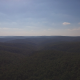 Rising Above Forest Wilderness - VideoHive Item for Sale