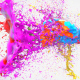Colorful Splash Logo - VideoHive Item for Sale