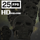 Skulls 04 - VideoHive Item for Sale