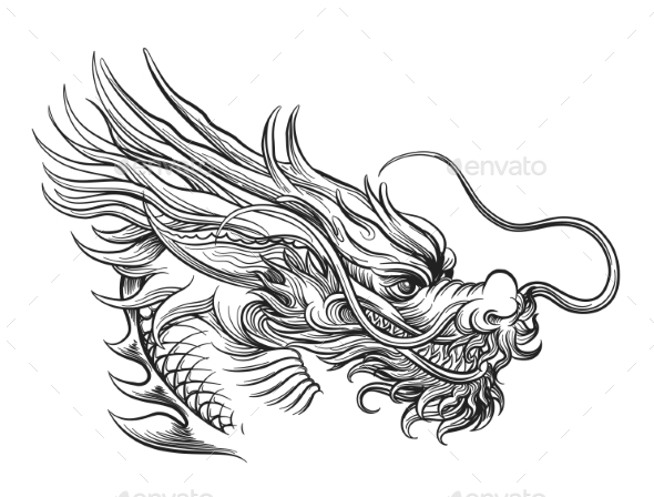 Hand drawn chinese dragon head by vectortatu graphicriver for Chinese dragon face template