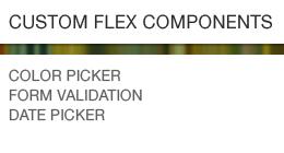 Custom Flex Components