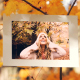 Gold Autumn - VideoHive Item for Sale