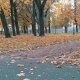 Skater Pushing Skateboard Picking Up And Continue Walking Autumn Park - VideoHive Item for Sale