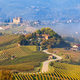 Rural road and vineyards in Italy. - PhotoDune Item for Sale
