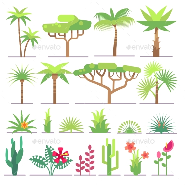 Different types of tropical plants trees flowers by for Different garden plants