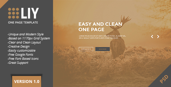 LIY – One Page PSD Template