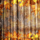 Autumn Background Loop - VideoHive Item for Sale