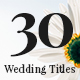 Lovely Wedding Titles Vol 3 - VideoHive Item for Sale