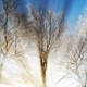 Winter Background - VideoHive Item for Sale