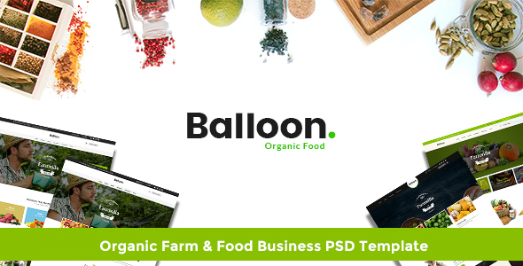 Balloon | Organic Farm & Food Business PSD Template - Food Retail