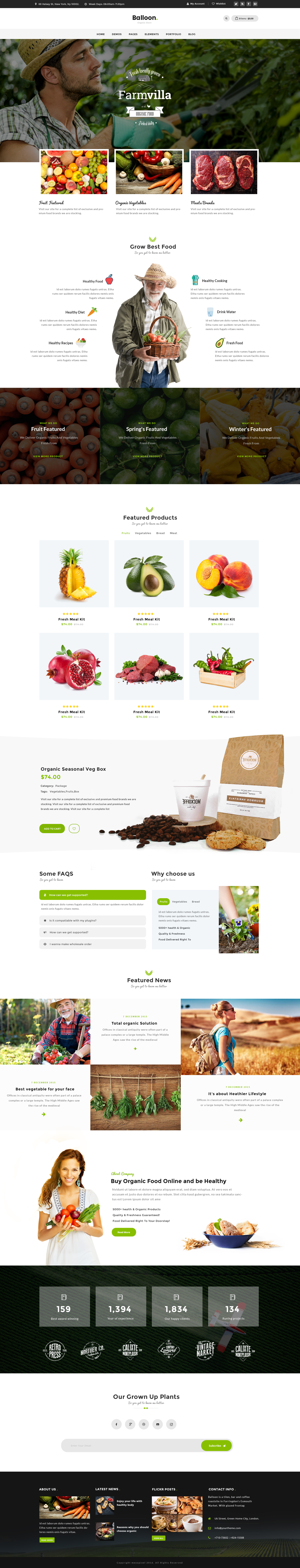 Balloon | Organic Farm & Food Business PSD Template by mexopixel ...