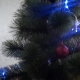 The Cat Climbed The Christmas Tree - VideoHive Item for Sale