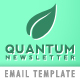 Quantum Email Newsletter - ThemeForest Item for Sale