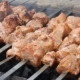 Grilled Caucasus Barbecue - VideoHive Item for Sale