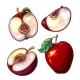 Set With Red Fresh Apples And Pieces Of Apples - GraphicRiver Item for Sale