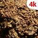 Organic Soil Test 736 - VideoHive Item for Sale