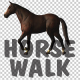 Horse Walk Loop - VideoHive Item for Sale