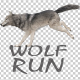 Realistic 3D Wolf Run Animation - VideoHive Item for Sale