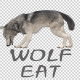 Realistic 3D Wolf Eating Animation - VideoHive Item for Sale