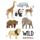 Wild Animals Set - GraphicRiver Item for Sale